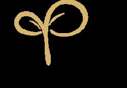 logo-intro-paschi-2020